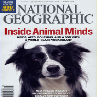 National Geographic Online Magazine